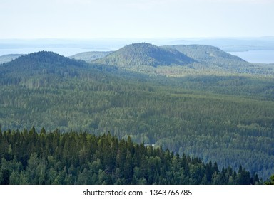 Summer landscape view from the top of the UkkoKoli, a fell at the national park Koli, Joensuu, Finland, the land of a thousand lakes.
