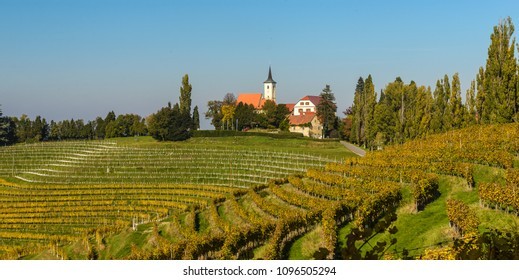 Summer landscape with vineards and small village Jeruzalem in Slovenia.
