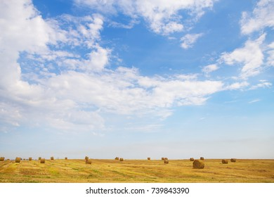 Summer Landscape with Wheat Field and Clouds.