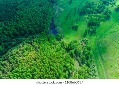 summer landscape, the wood in Russia, Siberia, shooting from air