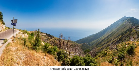 Summer  Llogara pass view  with dry trees and thistle on slope  and sea water surface (Albania)