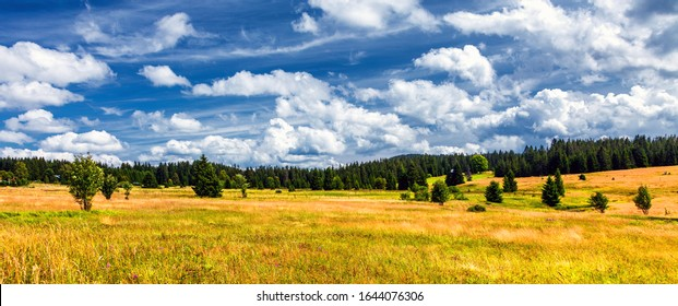 Summer Majestic mountains green grass field and blue sky with the incredible clouds