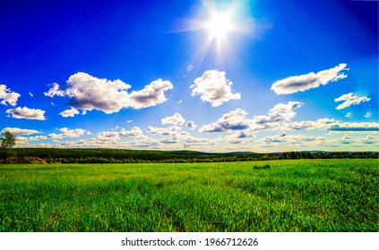 Summer meadow in sunny day. The sun is shining brightly over a green meadow. Meadow sun - Shutterstock ID 1966712626