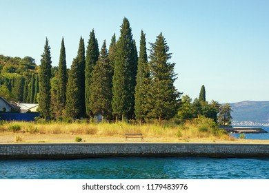 Summer Mediterranean landscape with silhouettes of green cypresses against sky.  Montenegro, Bay of Kotor