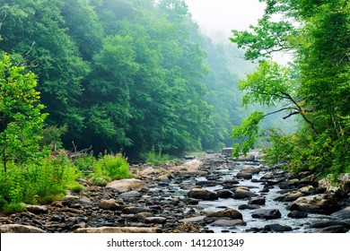 Summer mist along the Williams River, a rushing mountain stream as seen along the Williams River Scenic Backway, Monongahela National Forest, West Virginia, USA