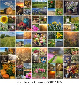 summer moments. images of summer nature, scenery, fruits and flowers. the sunsets and sunrises, flowers and insects.