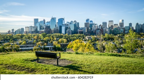 Summer morning in Calgary downtown with bench in foreground