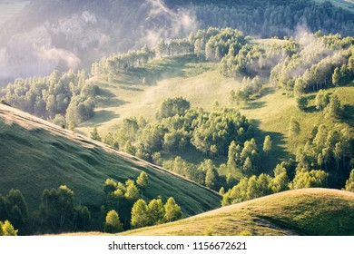 Summer morning landscape with fog over the hills and trees