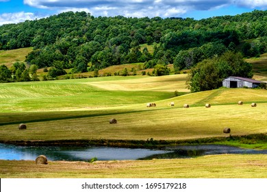 Summer morning view of a barn, hay field and freshly baled round hay bales in Flatwoods, Braxton County, West Virginia, USA