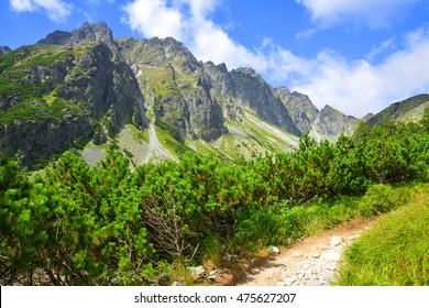 Summer mountain landscape. Hiking trail in Mengusovska Valley, Vysoke Tatry (High Tatras), Slovakia