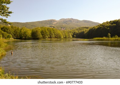 Summer mountain landscape with lake, forest and mountains in the background - Appennino Tosco Emiliano National Park