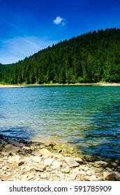 Summer mountain landscape, lake in the mountains. green trees in the warm sunny day