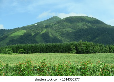 Summer mountain scenery in Niseko, Hokkaido, Japan