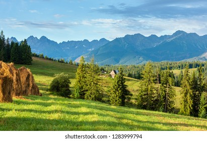 Summer mountain village outskirts with haystacks and Tatra range behind (Poland)