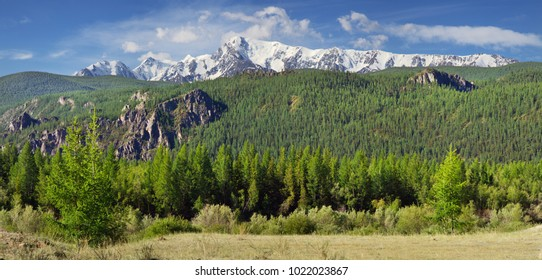 Summer in the mountains, mountain valley, panorama landscape, Altay