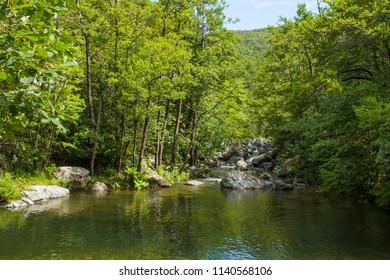 summer at the natural oasis river