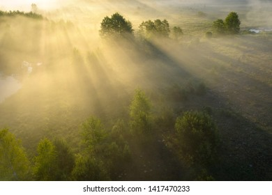 Summer nature background. Scenery misty morning in sunshine aerial view. Bright sun rays through trees in fog on grassy meadow. Sunny riverside in mist. Drone view on wild nature