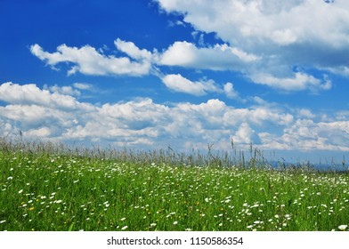 Summer nature meadow and clouds on sky