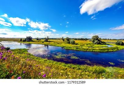 Summer nature river landscape. River nature panorama. Summer green river view. Summer river in nature