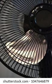 summer night cooling fan