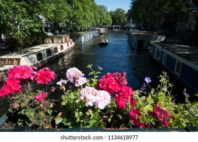 Summer on the Brouwersgracht, Amsterdam, Netherlands