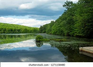 Summer on a Golden Pond.  Destination Merli-Sarnoski Park near Scranton,Pennsylvania