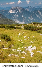 Summer on hill in the Alps