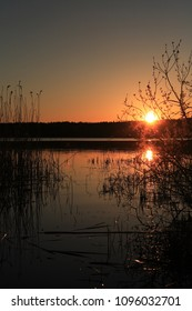 Summer outdoor background. Nice lake in forest under sunset