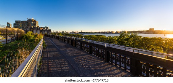 Summer panoramic view from the High Line promenade at sunset with the Hudson River (near Hudson yards and 34th Street). Chelsea, Manhattan, New York City