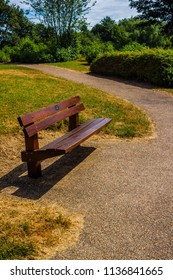 Summer Park Bench