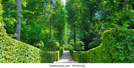 Summer park with hedges and alleys. Cozy garden for hiking. Wide photo.