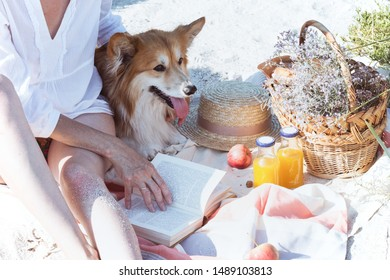 Summer - picnic by the sea. basket for a picnic with with buns, apples and juice. girl and dog on a picnic