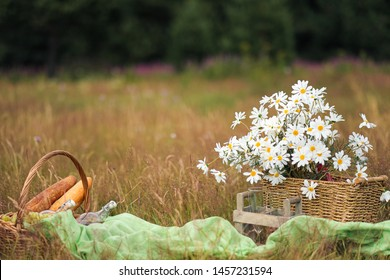 Summer picnic in the meadow on the green grass. Fruit basket, juice and bottled wine, watermelon and bread baguettes. White tablecloth and a bouquet of field daisies. The concept of recreation and