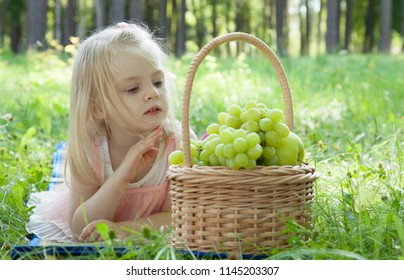 Summer picnic outdoors: cute little girl in a pink dress with a basket full of fresh grapes and apples