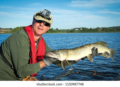 Summer pike ready for release