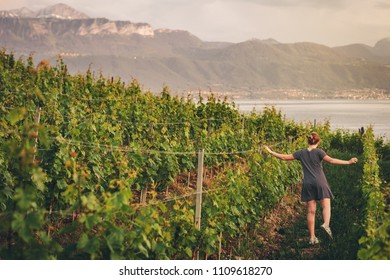 Summer portrait of a cute little girl in vineyard at sunset, admiring lake Geneva and mountains in Haute-Savoie, Auvergne-Rhone-Alpes region
