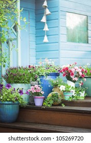 Summer potted flowers and garden shed