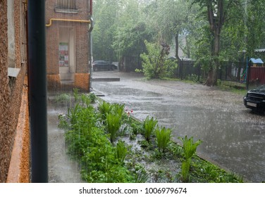 Summer pouring rain in the city. Small courtyard with asphalt way and flowerbed.