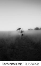 Summer rain fog