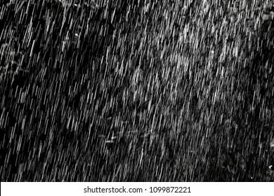 Summer rain in the garden on dark background. Abstract texture.