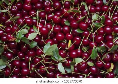 Summer ripe cherry