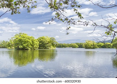 Summer river with bright blue sky and clouds