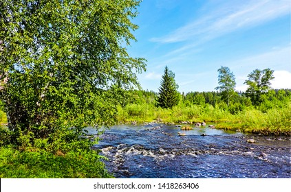 Summer river flowing landscape view. Wild river in summer forest. Summer forest wild river landscape. Wild river in summer forrest view