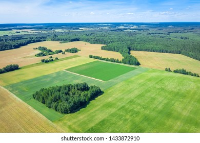 Summer rural landscape. Aerial survey of agricultural fields. Picturesque rural fields from a bird's eye view.