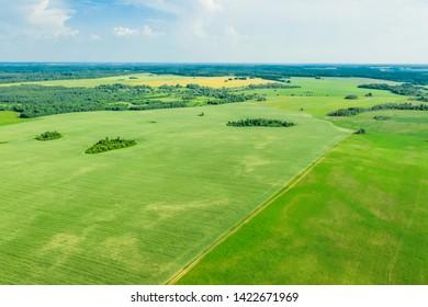 Summer rural landscape. Picturesque rural fields from a bird's eye view.