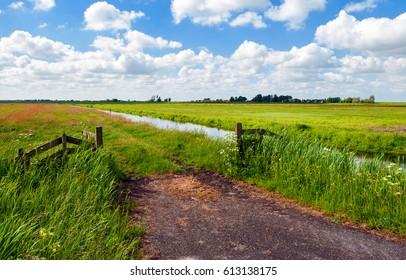Summer rural nature landscape