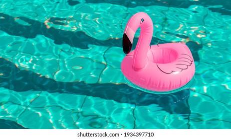 Summer sale. Pink inflatable flamingo in pool water for summer beach background. Minimal summer concept