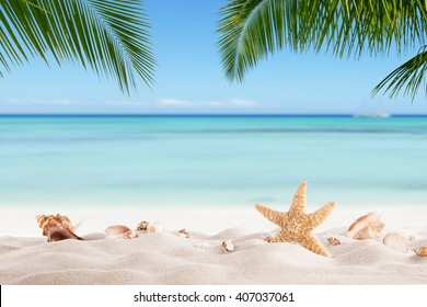 Summer sandy beach with blur ocean on background