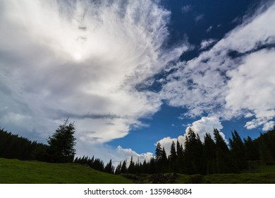 Summer scenery in the mountains, with rain and mist clouds in a fir tree forest
