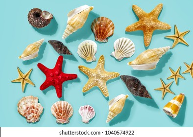 Summer shell decoration on blue flat background. Free space for your decoration.